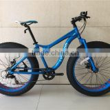 New Product Blue Big Tyre Snow Sand Beach Fat Bike