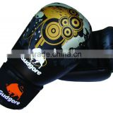 Boxing Gloves, Muaythai , Kick boxing, Training and Compeition