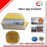 thermostat poultry or bird or chicken 48 egg incubator / hatcher