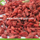 Factory Hot Sale Dried Himalayan Wolfberry