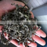 Dried Kelp Cut Shredded Laminaria Seaweed Seafood