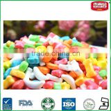 Colorful Bone Star Shaped Hard Press Candy Assorted Fruit Flavor Hard Candy