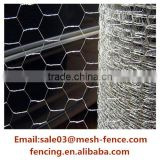 Alibaba gold supplier galvanized chicken coop hexagonal wire mesh(ISO 9001)                                                                                                         Supplier's Choice