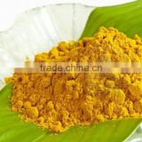 TURMERIC POWDER FROM VIETNAM-BEST PRICE