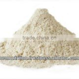 Best Quality Bulk Whey Protein Powder