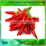 Bulk Chili Pepper Powder