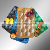 Manufacturing Fruit Plastic Cup Holder Tray