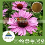 Kosher certificate 4% polyphenol HPLC, echinacea angustifolia extract, echinacea purpurea extract powder ( used for antiviral)
