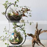 flower pots planters glass vase double layer glass ball hanging wedding decoration /fashion home decor wedding gift home decor