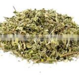 high quality natural damiana leaf extract10:1 20:1