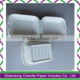 Disposable Biodegradable 9 Inch Sugarcane Pulp Fast Food Container