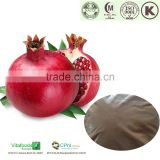 Best pricing pomegranate extract,pomegranate peel extract,pomegranate bark extract powder
