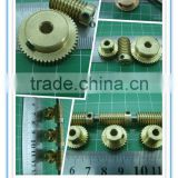 High Precision C45 worm gear with High Quality