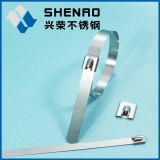 Stainless steel cabe tie (self-locking)