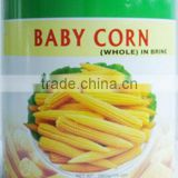 canned baby corn whole in tin(can)