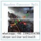 Made in china high quality 180 degree heat resistant Nylon conveyor belt for power plant