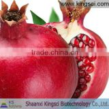Pomegranate bark extract powder ellagic acid