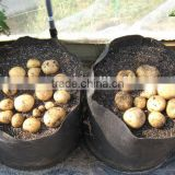 potato grow bags Garden Flower Planter Pot hydro for flower system smart non woven plant bag (1 gal to 1200 gal)
