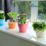 high quality colorful small mini decorative plastic flowers pot home and office decoration