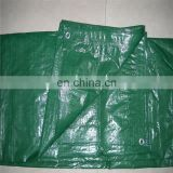 Finished PE Tarpaulin Sheet, Truck Cover Tarpaulin, Waterproof Green Tarpaulin