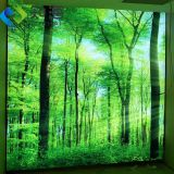 factory supply new interior decoration material uv print pvc stretch ceiling film