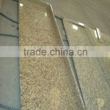 New products to sell new butterfly green granite countertop
