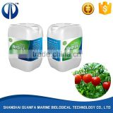 Hot selling good quality professional organic fertilizer manufacturing plant