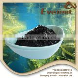High Concentrated Kelp Seaweed Extract 18% Flake, 100% Water Solubility