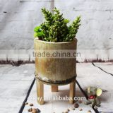 Unique Beautiful Home & Garden Decoration Nature Green Bamboo Flower Vase