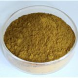 Cistanche Tubulosa Extract,Cistanche Tubulosa Extract Supplier,Cistanche Tubulosa Extract Factory