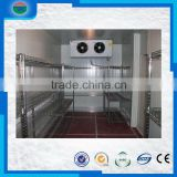 Bottom price special discount blast freezer/cold storage/cold room for ice cream