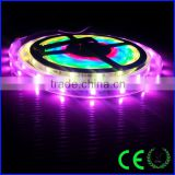 5M 5V 60Leds/M 150pixels Programmable WS2811 RGB Dream Color 5050 LED strip Individually Addressable IP67 Waterproof