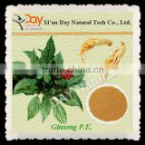 Halal Nutrition Supplements Panax Ginseng Extract for Anti-aging