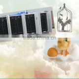 egg incubator price in kerala/hot sale new style bird egg incubator small incubator chicken eggs hatchery 50688