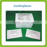 Aflatoxin B1 rapid food safety test kit