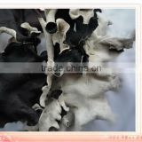 AD air dried white-black fungus mushroom
