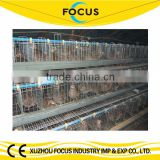 Focus industry hot galvanize chicken battery cage poultry cage chicken raising equipment for sale