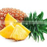 Sells Best Quality and 100% natural Fresh Pineapple Extract powder