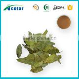 Best selling products senna tea extract powder benefits