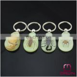 Luminous Real Insects Amber Keychain with Scorpion