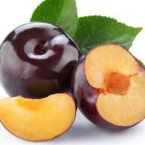 Black Plum Extract /Jamun seed Extract