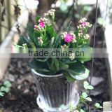 wholesale machine made clear glass pots for plant with outside engraving flower
