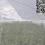 Agriculture plastic net for greenhouse