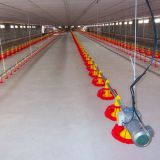 Automatic Poultry Farm Equipment Chicken Drinking System for Broiler Farm