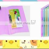 Transparent and Matte Surface File Folder