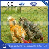 Alibaba China Hexagonal Wire Mesh Stainless Steel Bird Cage Wire Mesh Bird Cage Wrought Iron