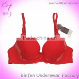 Ladies Stylish Hot Lace Sexy Model Bra