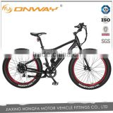 48v 750W bafang center motor fat tire Electric bicycle for bulk sale
