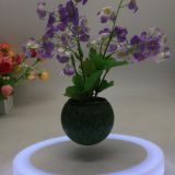 color led light maglev floating levitate bottom air bonsai tree pot