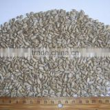 Hulled sunflower kernels - Bakery grade Standard